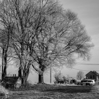 Gruna-im-Dezember-2016-8