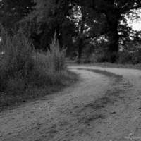 kirchruine-dambeck-2013-009-jpg